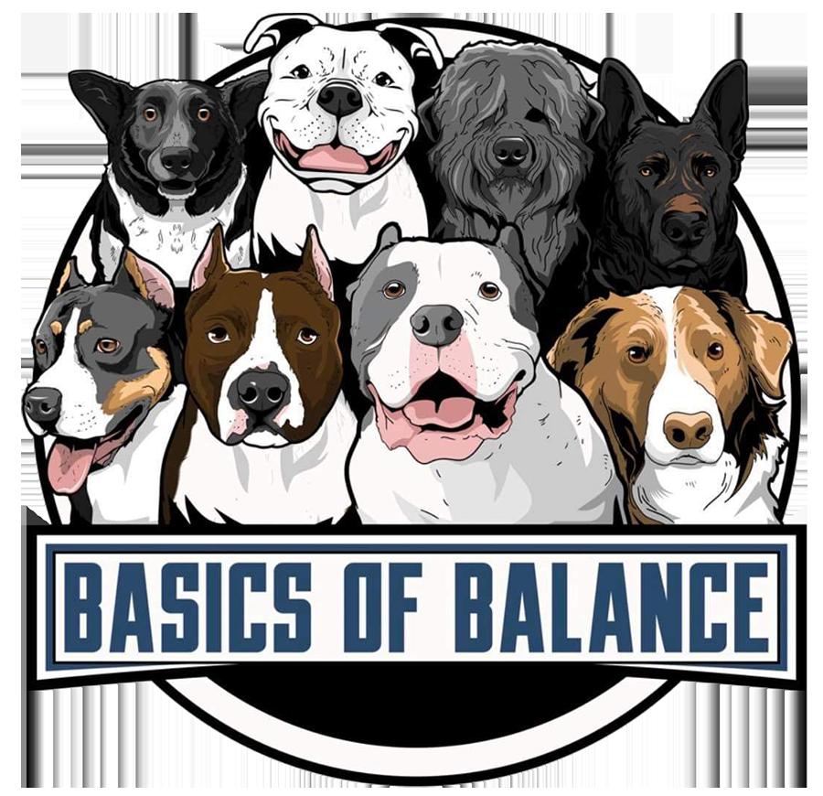 Basics of Balance